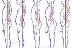 cosa sapere sulla postura