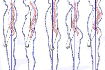 cosa dovresti sapere sulla postura