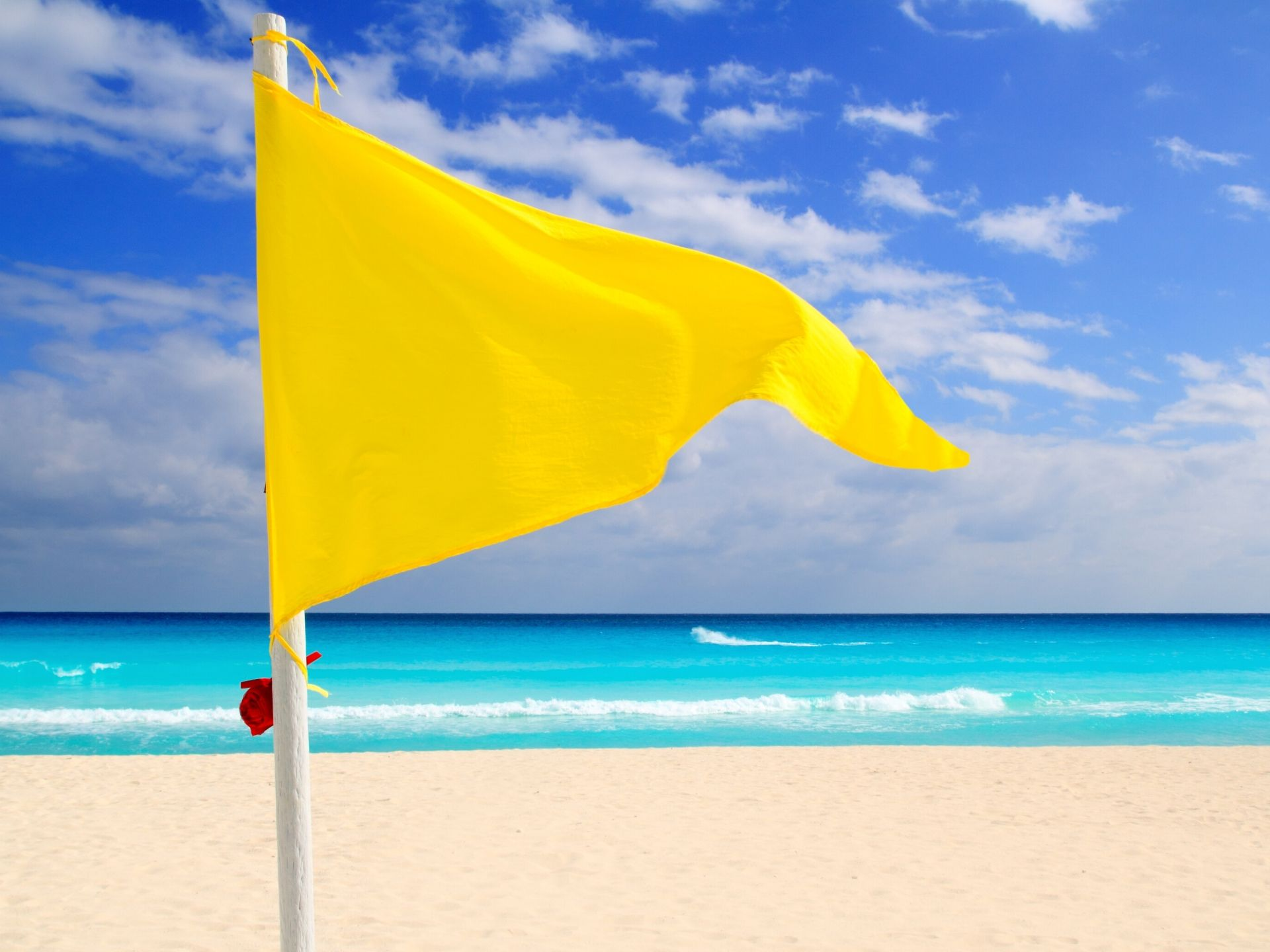 yellow flag in fisioterapia
