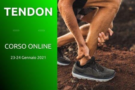 Tendon rehab online fisioscience