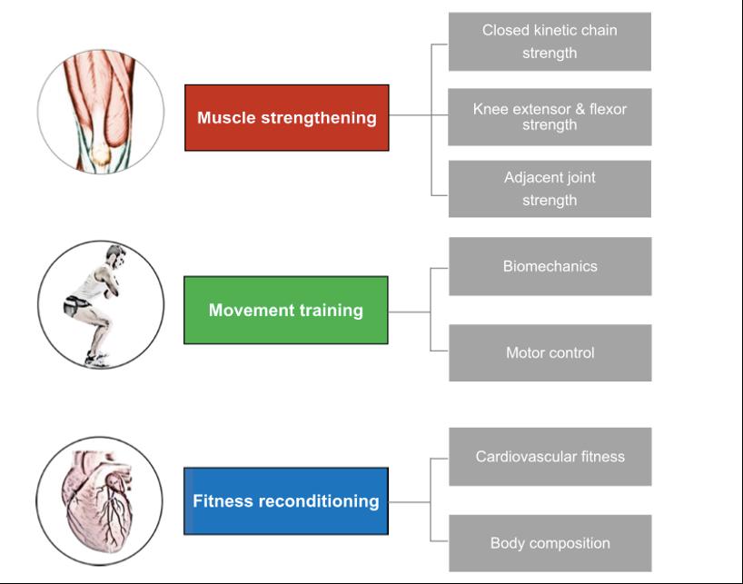protocollo riabilitativo lca