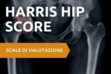 Harris Hip Score